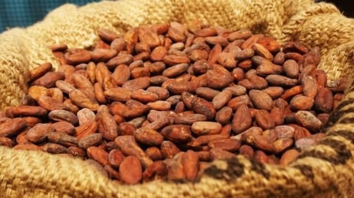 ローストしたチョコレートの原料であるカカオ豆