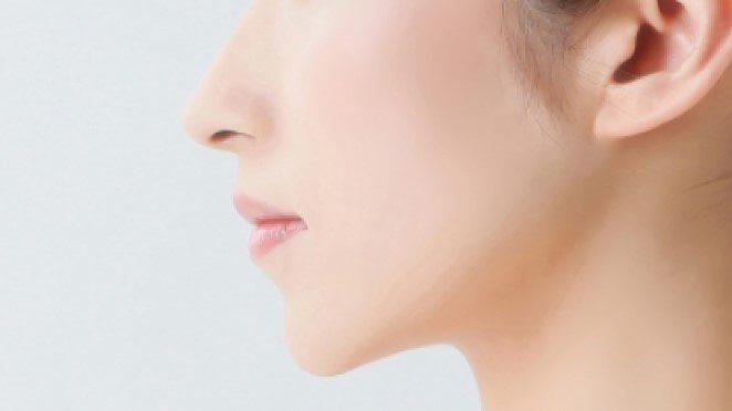 理想の鼻のイメージ