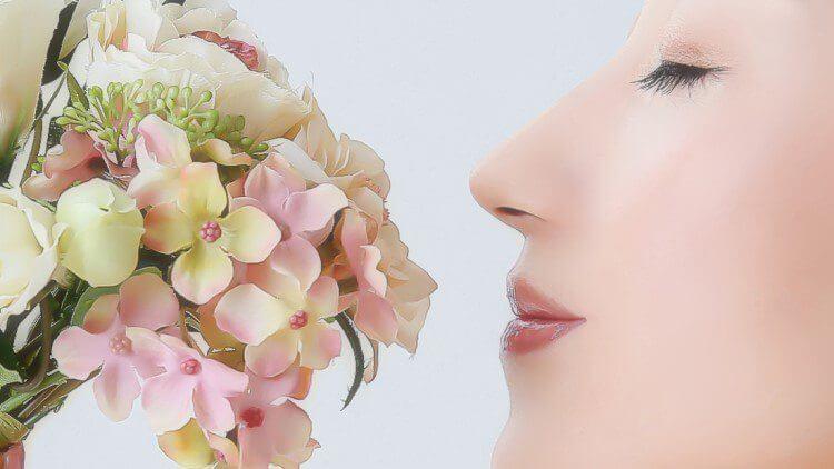 鼻筋の通った鼻のイメージ